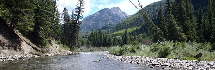 header-river